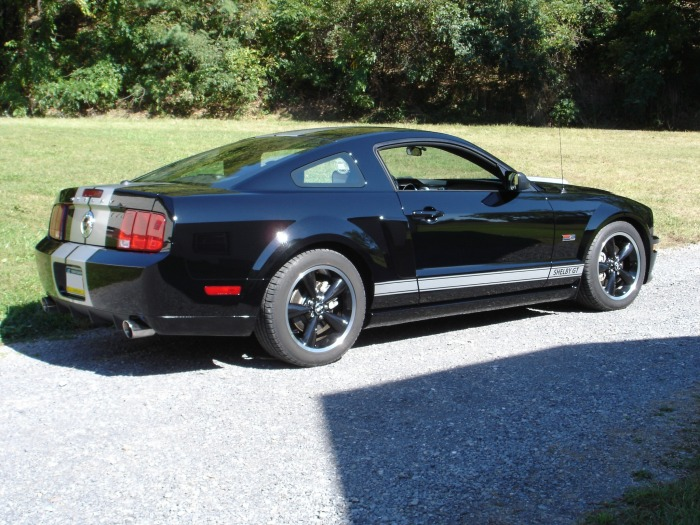 Ford Powered 2007 Shelby Gt Mustang